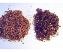 Dobry tani tyton w promocyjnej cenie już od 80 zl/kg 531306878