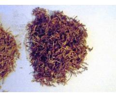 Tyton Papierosowy 1 kg-80 zl a 5kg+0,5kg gratis 531306878