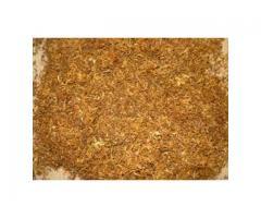 Tytoń,tyton dla wymagających klientów 733-624-040
