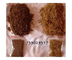 Tani Tyton, tytoń, Idealna jakość palenia Tani Sprawdzony Uczciwy