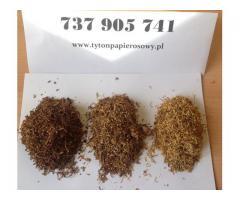 Tytoń szybka dostawa ! Tyton 79 zł 1 kg!
